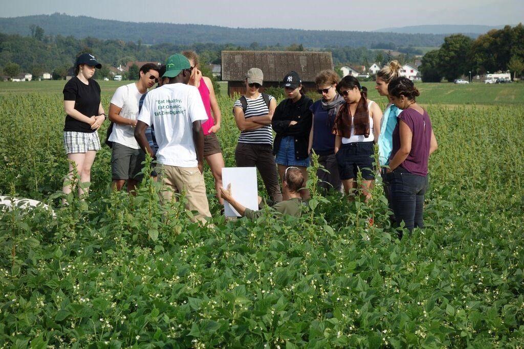 Soil analysis in Rheinau with my groupmates